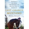Last Chance Mustang