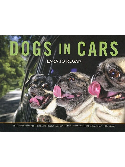 Dogs in Cars (Paper)