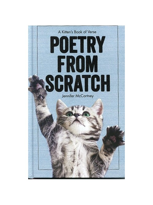 Poetry from Scratch