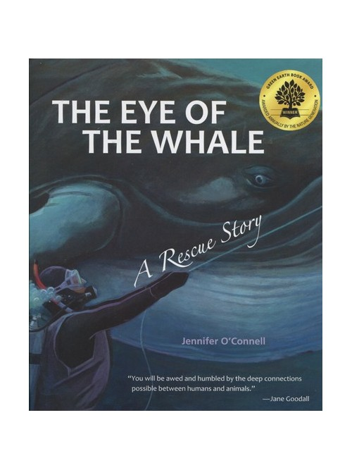 Eye of the Whale