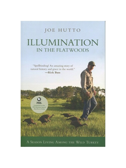 Illumination in the Flatwoods: A Season Living Among the Wild Turkey